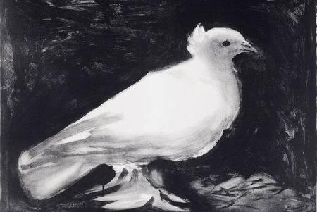Picasso Dove 1949