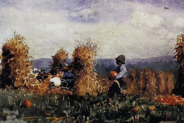 Pumpkin Patch 1878