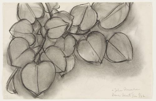 "Henri Matisse. (French, 1869-1954). Branch of a Judas Tree. 1942. Charcoal on paper, 10 3/8 x 15 7/8"" (26.3 x 40.3 cm). Gift of John Rewald in memory of Frances Weitzenhoffer. © 2008 Succession H. Matisse, Paris / Artists Rights Society (ARS), New York"