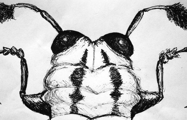bug head challenge 3